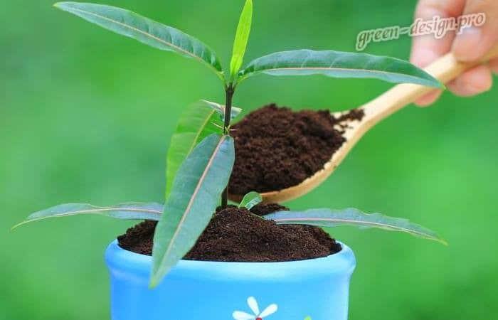 Оптимальный состав почвы