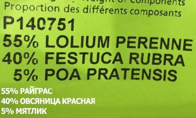 Фото недорогих иностранных травосмесей