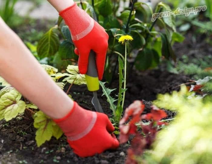 Механические методы борьбы с сорняками