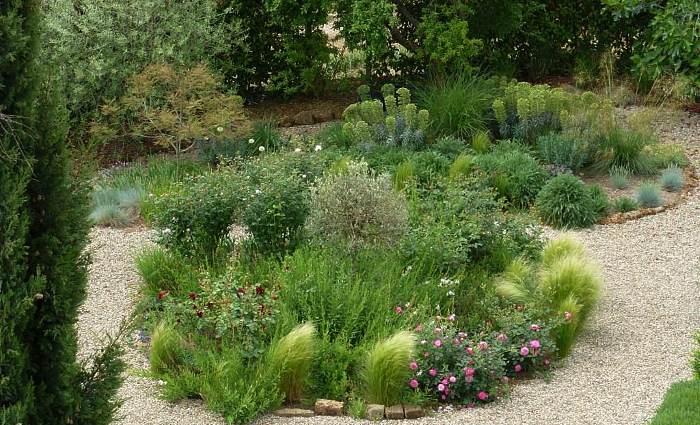 фото миксбордер с луговыми растениями
