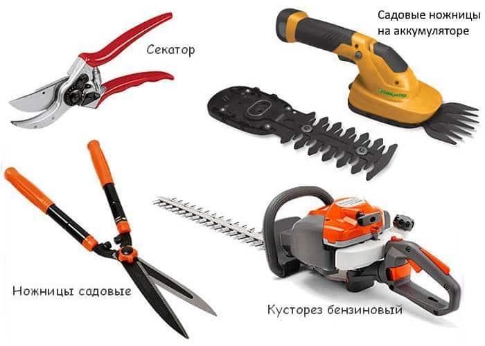 Фото садовых инструментов для стрижки живой изгороди
